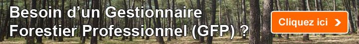 Besoin d'un Gestionnaire Forestier Professionnel (GFP) ?