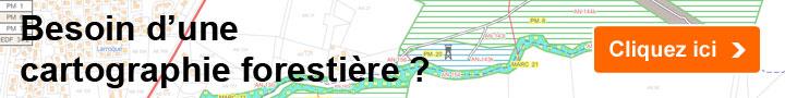 Besoin d'une cartographie forestière ?