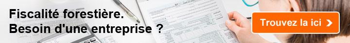 Fiscalité forestière: Besoin d'une entreprise?