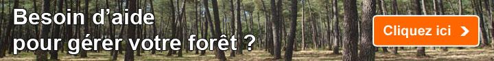 Besoin d'aide pour gérer votre forêt ?