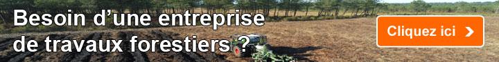 Besoin d'une Entreprise de Travaux Forestiers (ETF)?